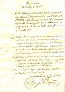 Programma del Maire d'Empoli